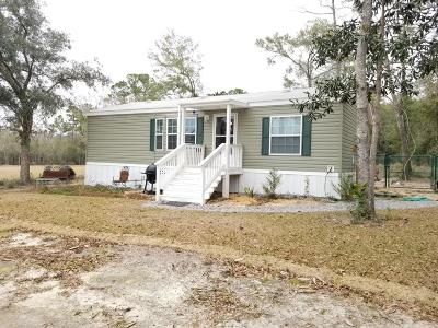 Freeport Single Family Home For Sale: 242 Blueberry Road
