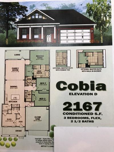Niceville Single Family Home For Sale: 802 NW Raihope Way