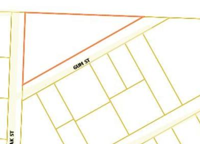 Walton County Residential Lots & Land For Sale: xx Gum Street