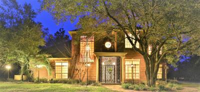 Single Family Home For Sale: 101 Old South Drive