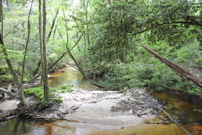 Defuniak Springs Residential Lots & Land For Sale: W Indian Creek Ranch Road