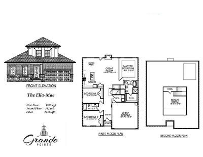 Inlet Beach Single Family Home For Sale: Lot 143 Grande Pointe Drive