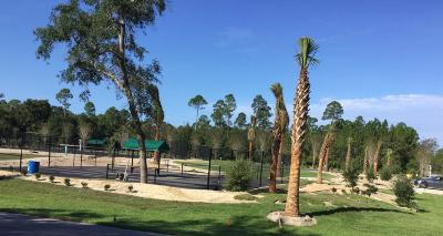 Walton County Residential Lots & Land For Sale: LOT 9 Grizzly Street