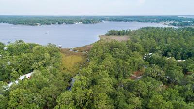Freeport Residential Lots & Land For Sale: Lot 14 Bear Creek Court