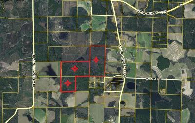Walton County Residential Lots & Land For Sale: 200AC Suttles Rd