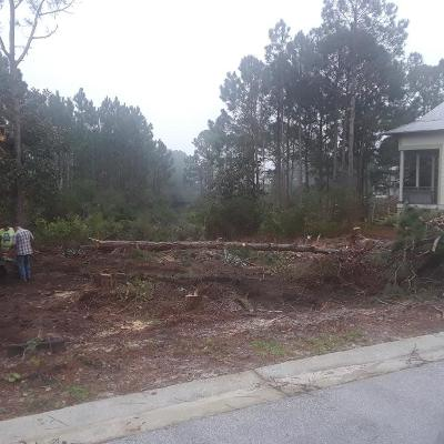 Miramar Beach Residential Lots & Land For Sale: 12 Bayshore Pines Court