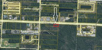 Santa Rosa Beach Commercial For Sale: W Us Highway 98
