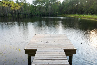 Defuniak Springs Farm For Sale: 833 Old Airport Road