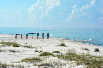 Inlet Beach Residential Lots & Land For Sale: Lot 10 Tidewater Court