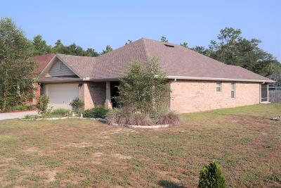 Defuniak Springs Single Family Home For Sale: 85 Magnolia Lake Drive