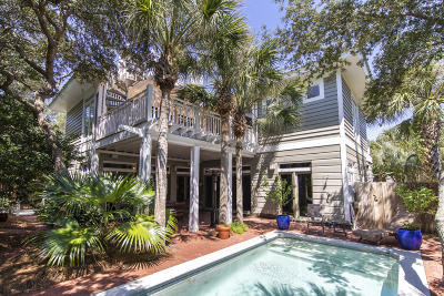 Inlet Beach Single Family Home For Sale: 45 Seacrest Drive