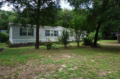 Freeport Single Family Home For Sale: 10 Hudson Court