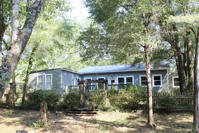 Defuniak Springs Single Family Home For Sale: 439 Davis Drive