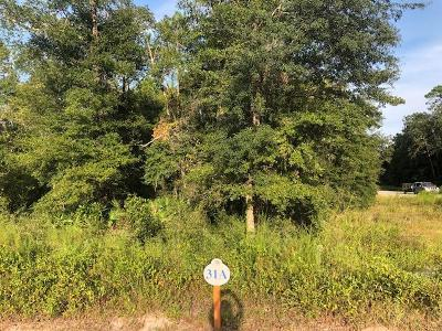 Walton County Residential Lots & Land For Sale: Lot 31 Hibernate Way