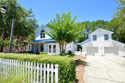 Walton County Single Family Home For Sale: 360 Tradewinds Drive