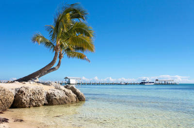 Islamorada Condo/Townhouse For Sale: 81801 Overseas Highway #633