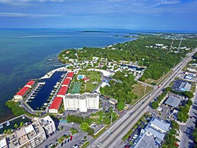 Futura Yacht Club (88.5) Condo/Townhouse For Sale: 88540 Overseas Highway #101