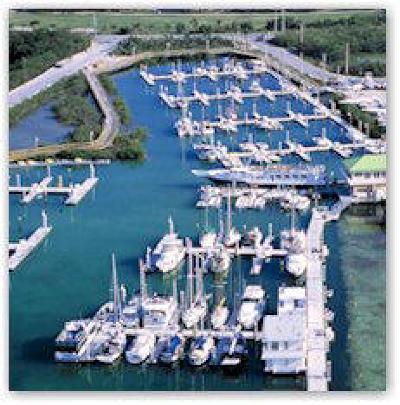 Big Pine Key, County, Islamorada, Key Colony, Key Colony Beach, Key Largo, Key West, Layton, Long Key, Marathon, Other, Summerland Key, Tavernier Boat Slip For Sale: 5555 College Road #5