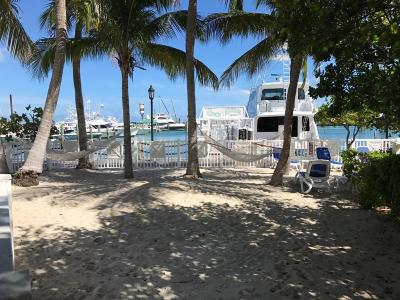 Big Pine Key, County, Islamorada, Key Colony, Key Colony Beach, Key Largo, Key West, Layton, Long Key, Marathon, Other, Summerland Key, Tavernier Boat Slip For Sale: 951 Caroline Street #SLIP 12