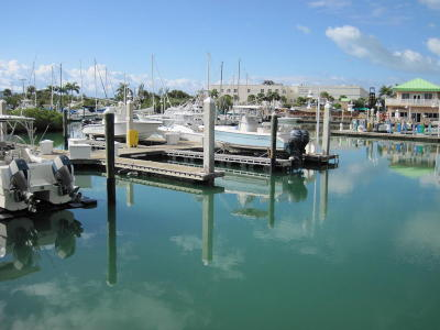 Big Pine Key, County, Islamorada, Key Colony, Key Colony Beach, Key Largo, Key West, Layton, Long Key, Marathon, Other, Summerland Key, Tavernier Boat Slip For Sale: 5555 College Road #SLIP 15