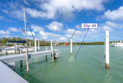 Big Pine, Big Pine Key, Conch, Duck, Key Colony, Key Colony Beach, Layton, Long Key, Marathon, No Name, Summerland, Summerland Key Boat Slip For Sale: 12399 Overseas Highway #Slip 46