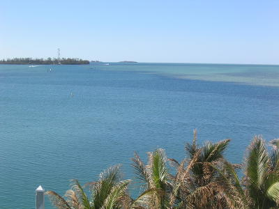 Big Pine Key, County, Islamorada, Key Colony, Key Colony Beach, Key Largo, Key West, Layton, Long Key, Marathon, Other, Summerland Key, Tavernier Boat Slip For Sale: 5555 College Road #SLIP 12