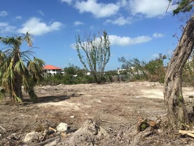 Monroe County Residential Lots & Land For Sale: 114 Coco Plum Drive