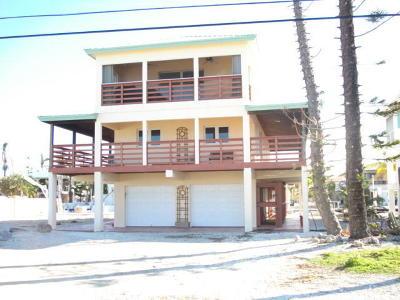 Monroe County Single Family Home For Sale: 29140 Mango Lane