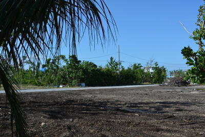 Monroe County Residential Lots & Land For Sale: 27345 St. Lucie Lane