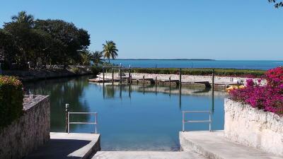 Islamorada Residential Lots & Land For Sale: 19 Flamingo Hammock Road