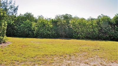 Monroe County Residential Lots & Land For Sale: 199 Stirrup Key Boulevard