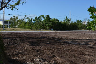 Monroe County Residential Lots & Land For Sale: 27365 St Lucie Lane