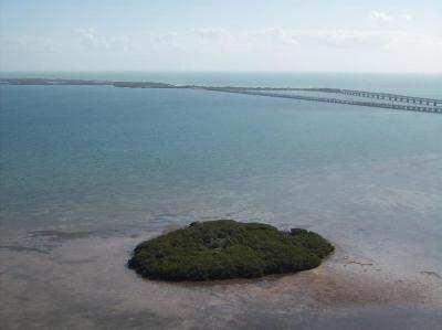 Residential Lots & Land For Sale: 99 Don Quixote Key