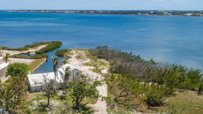 Residential Lots & Land For Sale: 30912 Bay Shore Drive