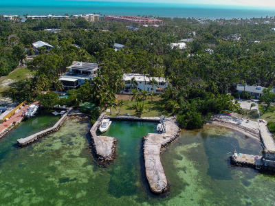 Islamorada Single Family Home For Sale: 138 Plantation Boulevard