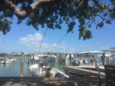 Key West Condo/Townhouse For Sale: 1445 S Roosevelt Boulevard #410