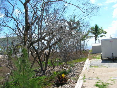 Monroe County Residential Lots & Land For Sale: Lot 20 Overseas Highway