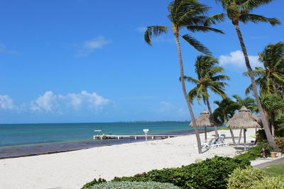 Long Key Condo/Townhouse For Sale: 65700 Overseas Highway #C3