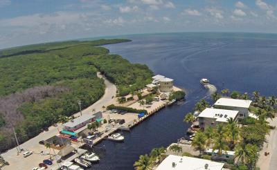 Commercial For Sale: 51-53 Garden Cove Drive
