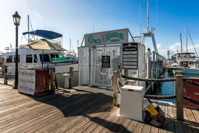 Big Pine Key, County, Islamorada, Key Colony, Key Colony Beach, Key Largo, Key West, Layton, Long Key, Marathon, Other, Summerland Key, Tavernier Boat Slip For Sale: 951 Caroline Street #SLIP 15