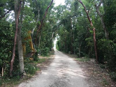 Residential Lots & Land For Sale: 102265 Overseas Highway