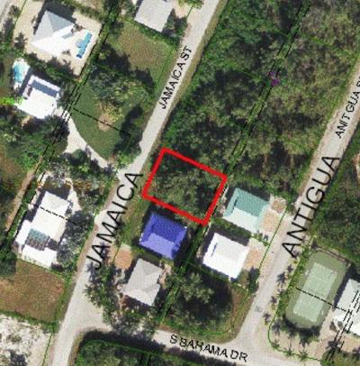 Residential Lots & Land For Sale: 20 Jamaica Street
