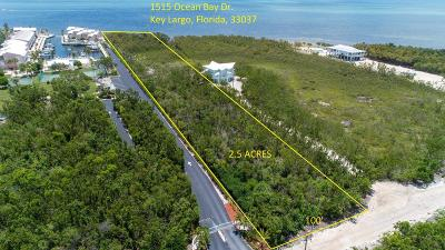 Residential Lots & Land For Sale: 1515 Ocean Bay Drive