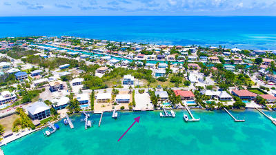 Single Family Home Contingent/Show: 118 Bimini Drive