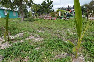 Sugarloaf, Cudjoe, Saddle Bunch Residential Lots & Land For Sale: 19590 Mayan Street
