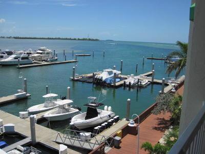 Big Pine Key, County, Islamorada, Key Colony, Key Colony Beach, Key Largo, Key West, Layton, Long Key, Marathon, Other, Summerland Key, Tavernier Boat Slip For Sale: 5555 College Road #10