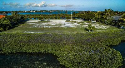 Key West, Stock Island, Geiger, Key Haven, Shark Key Residential Lots & Land For Sale: 17 Sea Lore Lane
