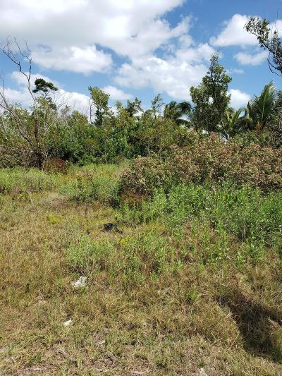 Sugarloaf, Cudjoe, Saddle Bunch Residential Lots & Land For Sale: 1155 Thatch Lane