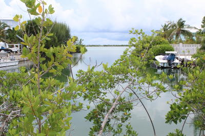 Residential Lots & Land For Sale: 80 S Point Drive