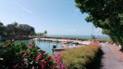 Islamorada Residential Lots & Land For Sale: 27 Flamingo Hammock Road